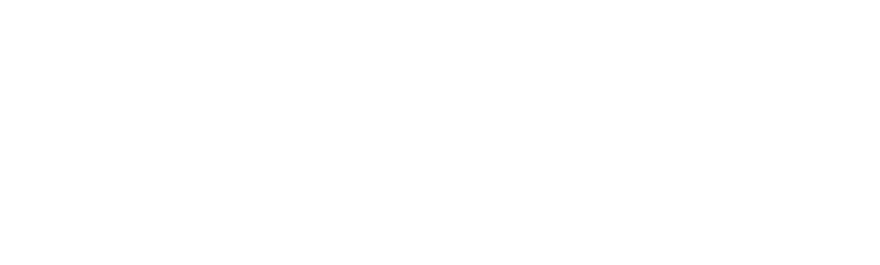 MediaZ Form